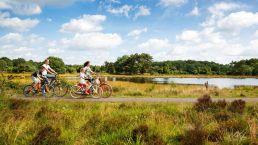 Fahren Sie vom Camping Zwinderen aus durch die wunderschöne Natur von Drenthe