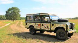Machen Sie eine Safari in Gees vom Camping Zwinderen in Drenthe