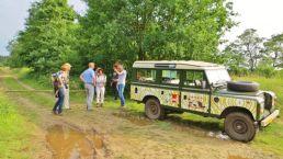 Erleben Sie die Safari durch Gees vom Camping Zwinderen in Drenthe
