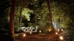 Besuchen Sie die Dolmen vom Camping Zwinderen in Drenthe
